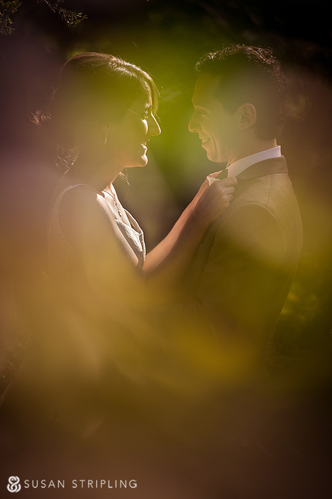 central park wedding permission
