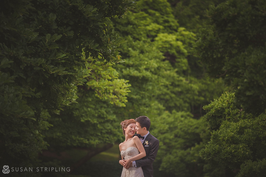 brooklyn botanical garden wedding photographers