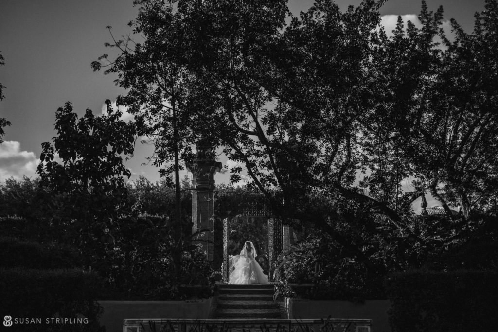 vizcaya wedding pictures