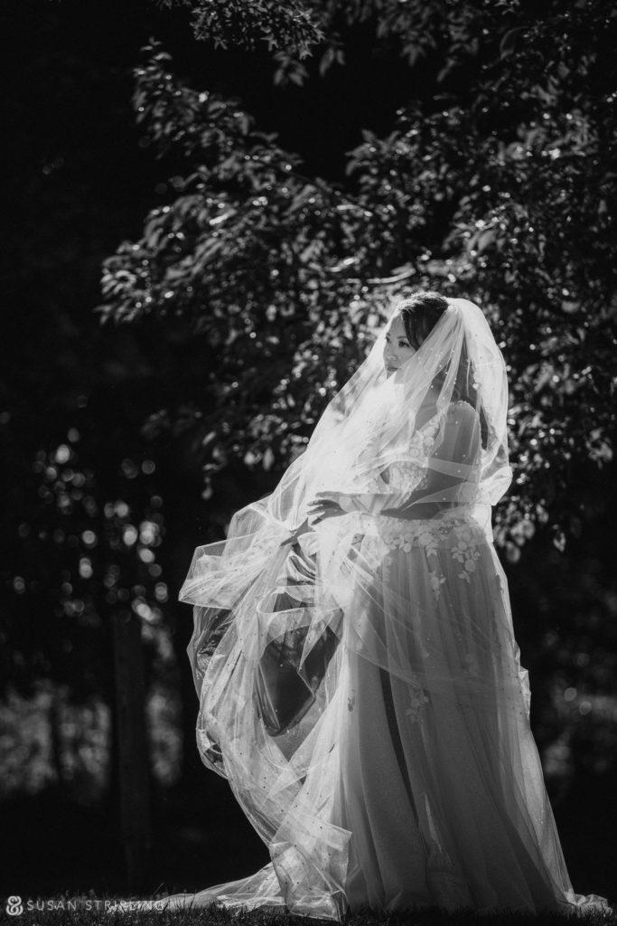 photos lessings whitby castle wedding