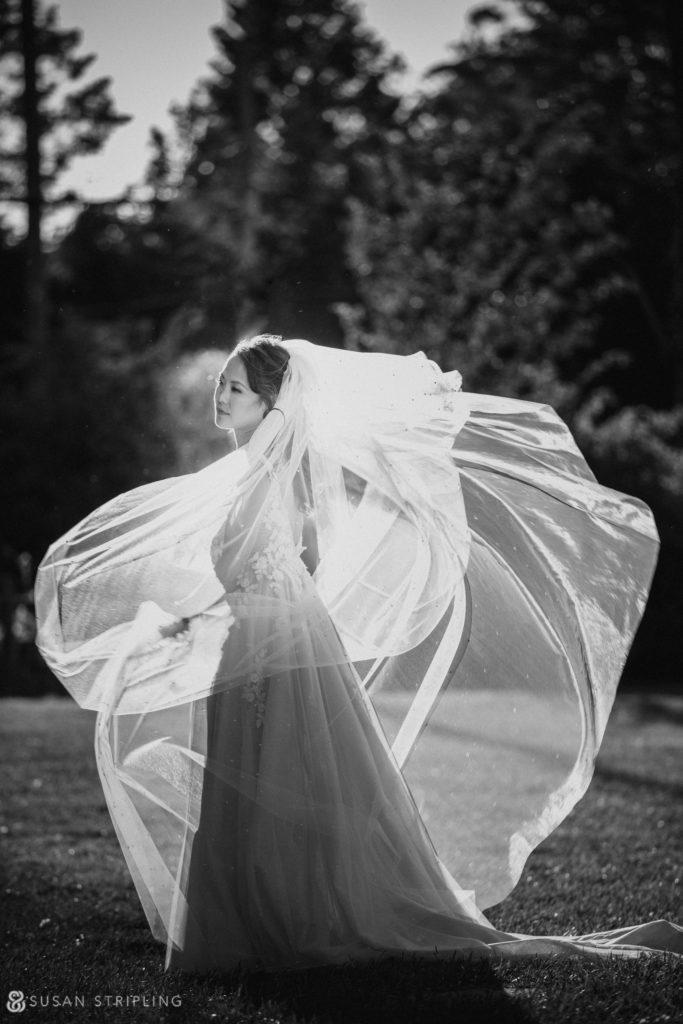 bridal portrait lessings whitby castle wedding